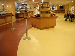 DYNA-PUR Brushable Polyurea is a Durable Floor Coating