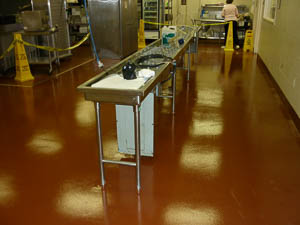 DYNA-PUR Brushable Polyurea in Commercial Kitchen