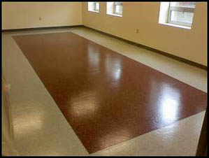 DYNA-PUR Brushable Polyurea Protects Laboratory Floor