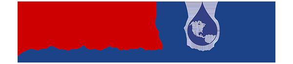Dynasolv Logo